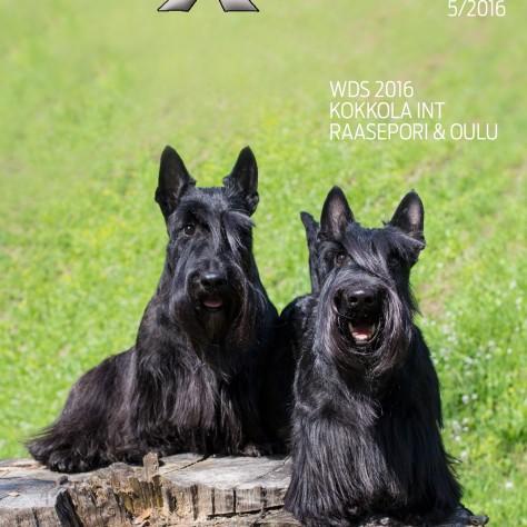 Vuoden viides DogXpress on ilmestynyt