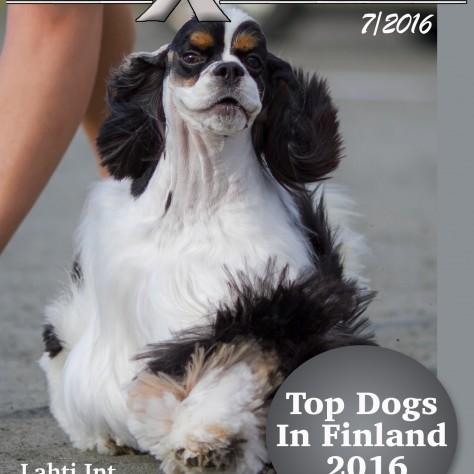 Uusin DogXpress on julkaistu