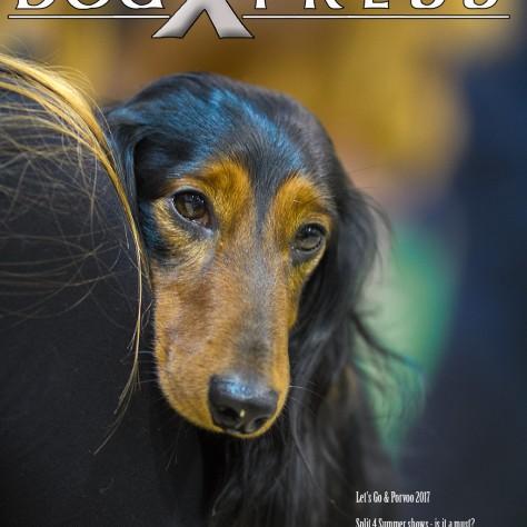 DogXpress on ilmestynyt